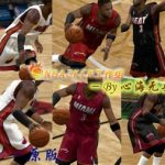 Miami Heat Jersey Patches for NBA 2K9
